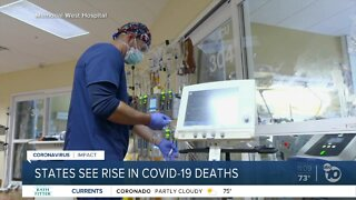 States see rise in COVID-19 deaths