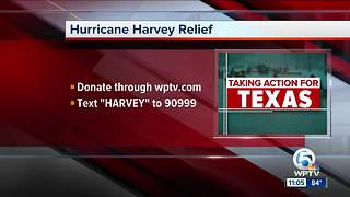 Hurricane Harvey Relief Telethon - Video