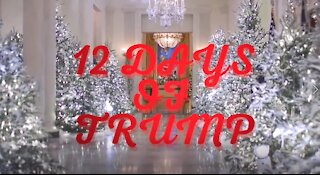12 Days of Christmas Trump
