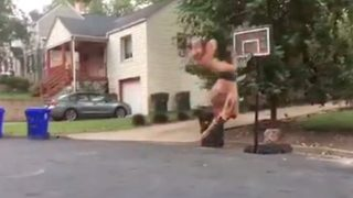 Hilarious video shows T-Rex taking on basketball and failing miserably - Video