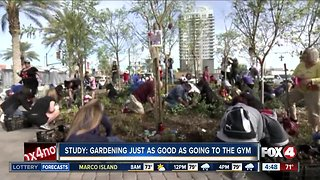 Study: Gardening just as good as going to the gym