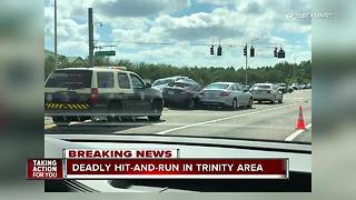Fatal hit-and-run crash under investigation in Pasco County - Video