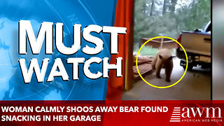Woman Calmly Shoos Away Bear Found Snacking in Her Garage: 'You Can't Have It!' - Video