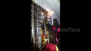 Rescuers Free Cat Trapped In Building  - Video