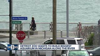 Detroit Zoo CEO talks about building an aquarium in downtown Detroit