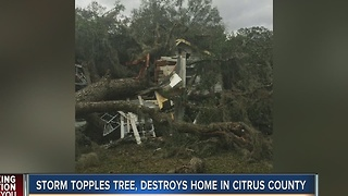 Storm topples tree, destroys home in Citrus County - Video