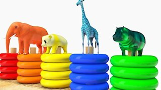 Learn color Car W Learn Number and Learn Animals Elephant Cartoon Nursery Rhymes Song for Kids