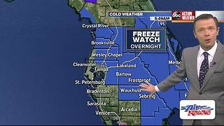Freeze Watch issued for part of Tampa Bay - Video