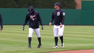 Tigers face low expectations with open arms - Video