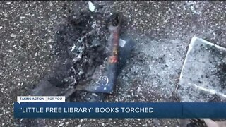 Books burned at Little Free Library in Madison Heights
