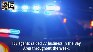 ICE raids 77 businesses in Northern California - Video