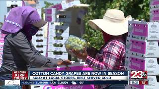 Grapes that taste like Cotton Candy grown in Kern County - Video