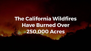 California Wildfires Grow, Now Larger Than New York City and Boston Combined - Video