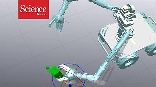 Look out: Robots could soon teach each other new tricks - Video