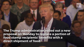 Trump Offers Unique Food Stamp Proposal to Save Money, Help US Producers - Video