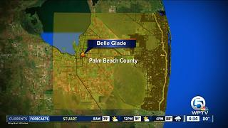 Man injured in Belle Glade shooting - Video
