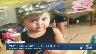 Aunt speaks out after 3 children killed in Phoenix home