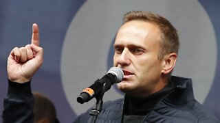 House Panel Requests Probe Into Alexei Navalny Poisoning