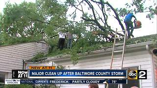 Downed tree damages 2 homes in Essex - Video