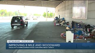 Ferndale, Detroit to host meeting addressing concerns over Woodward and 8 Mile intersection