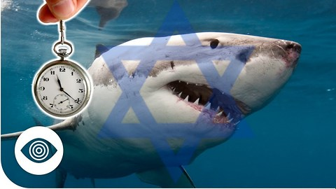 Does Israel Have Mind-Controlled Sharks?