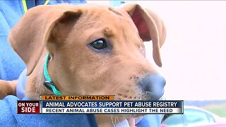 Animal advocates support pet abuse registry