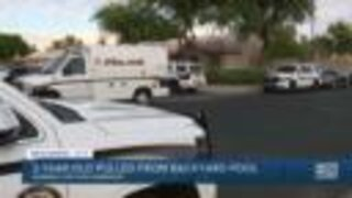 FD: 3-year-old dies after being pulled from pool near 59th Avenue and Beardsley Road