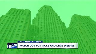 Watch out for ticks and Lyme disease in WNY - Video