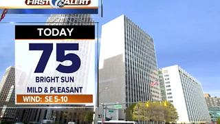 Sunny & mild Monday - Video