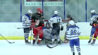 Williamsville East beats Grand Island in Section VI quarterfinals - Video