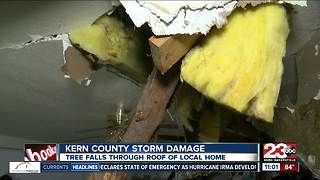 Tree falls through roof of southwest Bakersfield home - Video
