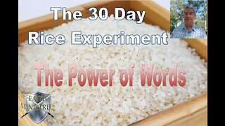 The 30 Day Rice Experiment - The Power of Words