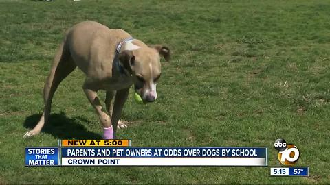 Parents and pet owners at odds over dogs by school