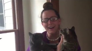 Husband Surprises Wife With Cat Reunion - Video