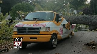Winds cause tree to fall on ice cream truck in Kalamazoo - Video