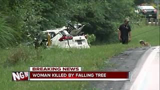Severe weather: Woman dead after tree falls on her car during storm on Friday