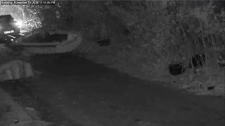 Detroit police seek suspects caught on camera illegally dumping boat on street