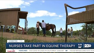 Healing with Horses: Nurses take part in equine therapy