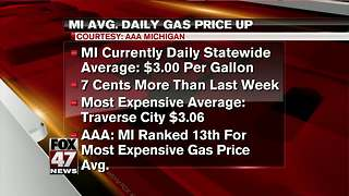 AAA Michigan: Daily gas price up 7 cents - Video