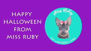Happy Halloween from Miss Ruby