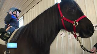 Exceptional Equestrians' Spring Pledge Drive funds therapy for those with special needs - Video