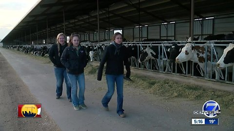 4-H girls win national dairy competition