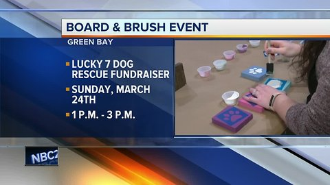 Board & Brush Green Bay hosts event for Lucky 7 Dog Rescue