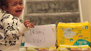 Babies reaction to Trump's Wall  - Video