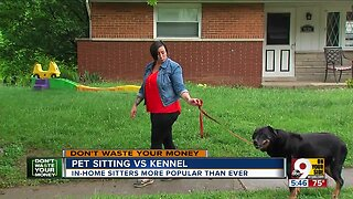 In-home pet sitters: Plusses and minuses