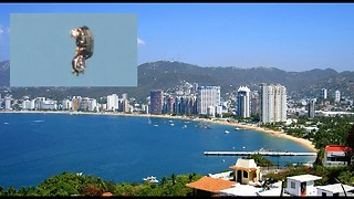 "Photo Of ""UFO Drone"" Taken Over Acapulco Guerrero, Mexico- August 28, 2017  - Video"