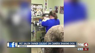 Pet groomer claims animal abuse in viral video - Video