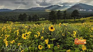 San Francisco Peaks in Arizona Highways Magazine - Video