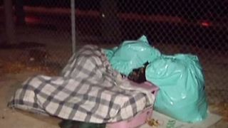 More homeless choosing to sleep on street - Video