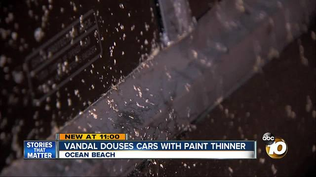 Vandal douses cars with paint thinner